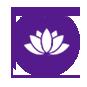 image-icon1